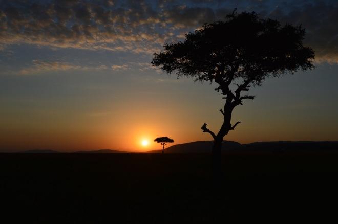 Masi Mara, Kenya | Africa